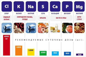 кровь на микроэлементы