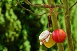 какие витамины в яблоке красном