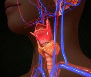 Лечение воспаления нерва