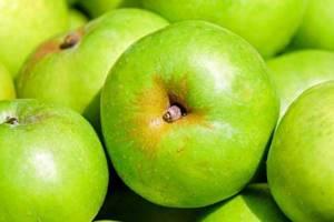 какие витамины в сушеных яблоках