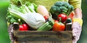 Основы правильного питания при полиартрите суставов